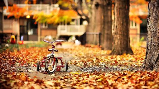 دراجة الخريف